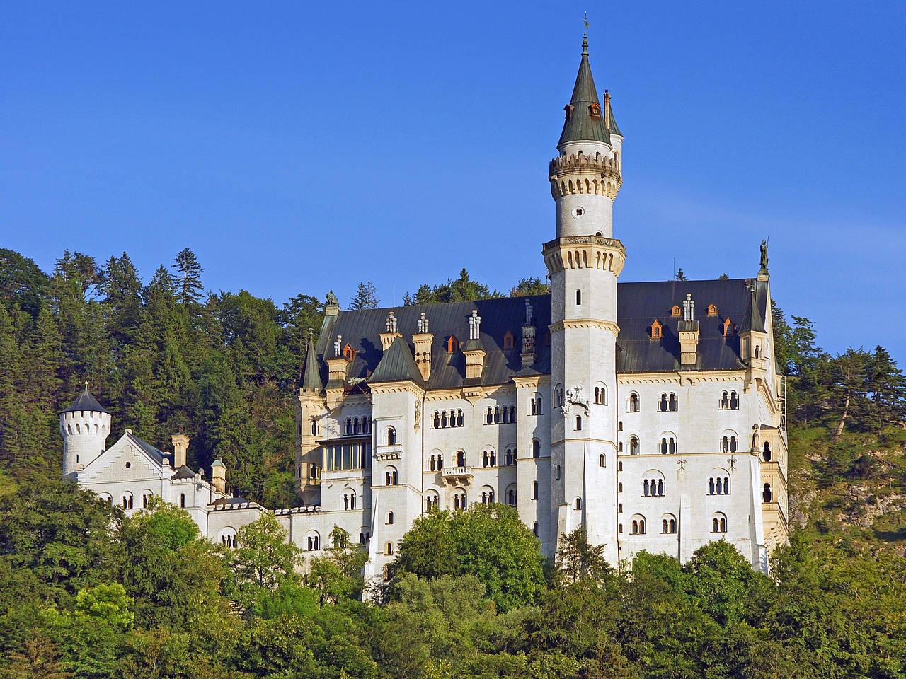 Schloss Neuschwanstein Foto Von München Mit Fotogalerie